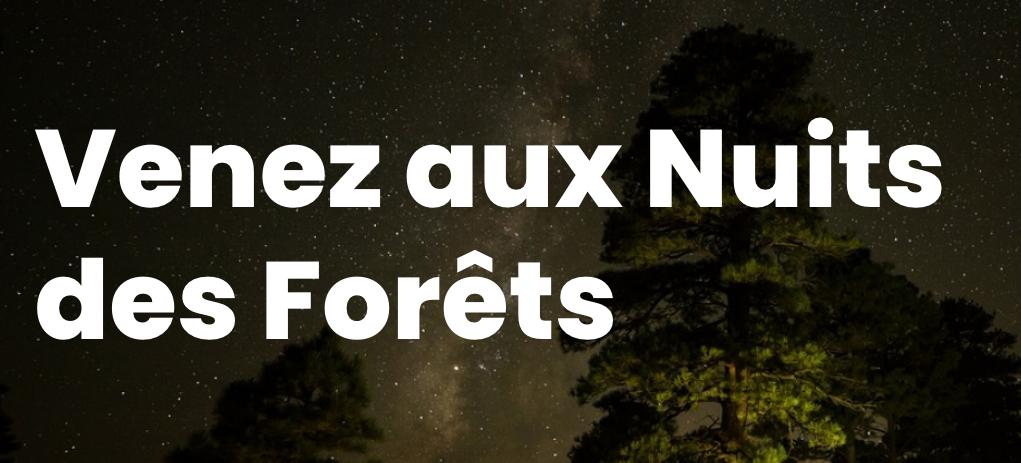 Des journées et des nuits partagées en forêt de Tréminis